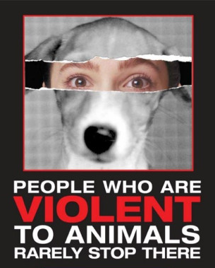 Image result for children abusing animals