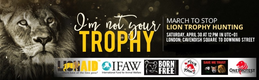 563_march-to-stop-lion-trophy-hunting_960x300