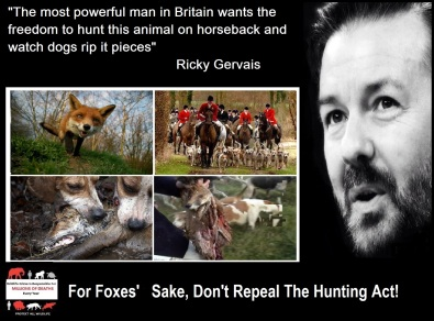 RICKY GERVAIS FOX HUNTING 4