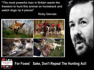 RICKY GERVAIS FOX HUNTING 4