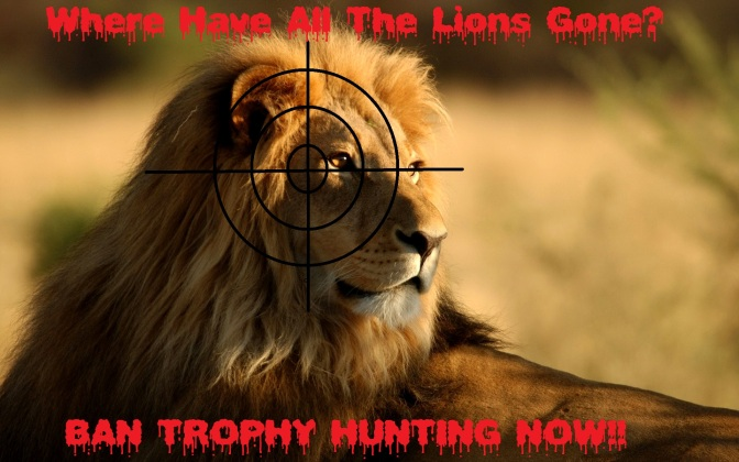WHERE HAVE ALL THE LIONS GONE