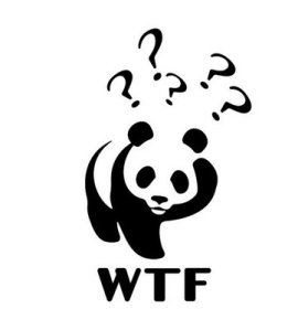 - - WWF wwf-wtf-bear-from-presentationpictures