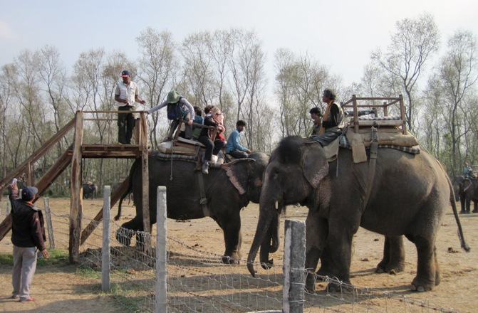 1.-All-aboard...-Elephant-safari-into-Chitwan-National-Park...-Last-Elephant-leaves-in-five-minutes