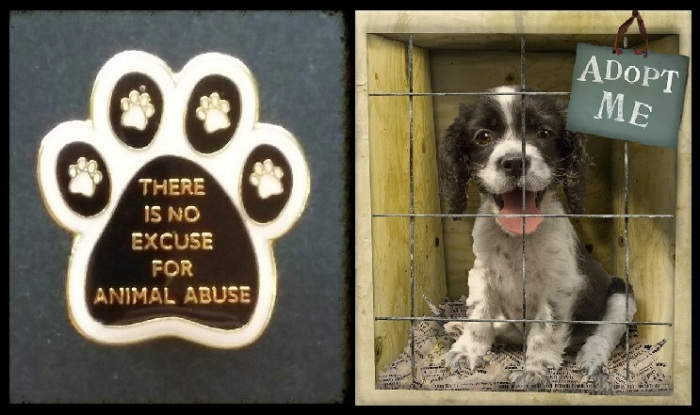 - a THERE IS NO EXCUSE FOR ANIMAL ABUSE