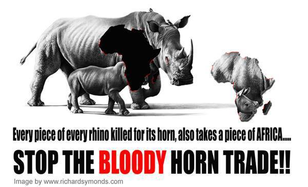 bloody-ivory-trade
