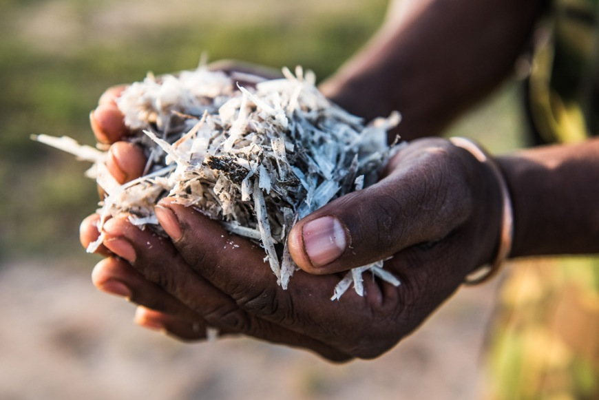 16-horn-shavings-from-the-dehorning-exercise-are-carefully-collected-bagged-and-removed-from-the-site-together-with-the-horns-and-in-accordance-to-legislative-requirements