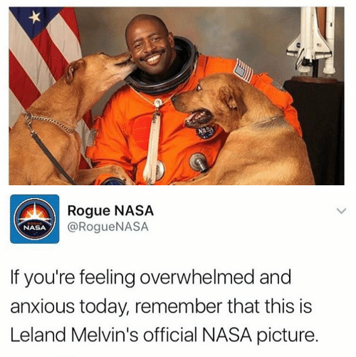 rogue-nasa-rogue-nasa-nasa-if-youre-feeling-overwhelmed-and-13511695