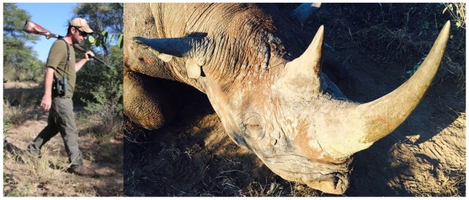 150519130317-rhino-hunted-in-namibia-exlarge-169