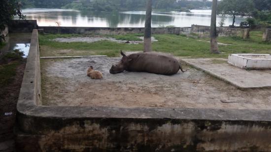 dhaka-zoo
