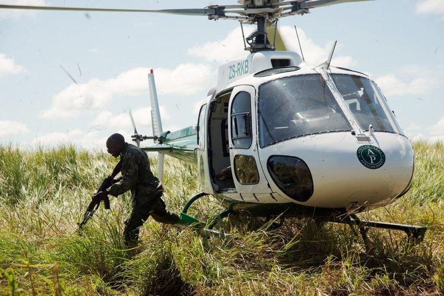 garamba-democratic-republic-of-congo-elephant-poaching-3